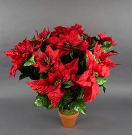 Seidenblumen Roß Weihnachtsstern 65x60cm im Topf rot PM künstliche Pflanzen Blumen Kunstpflanzen Kunstblumen Poinsettie - 1