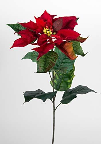 Seidenblumen Roß Weihnachtsstern Natura 72cm samt-rot PM Kunstblumen künstliche Blumen Poinsettie - 3