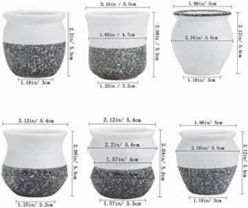 T4U 6cm Japanischer Stil Keramik Sukkulenten Kakteen Töpfe mit Untersetzer 6er-Set, Mini Blumentöpfe für Mini Zimmerpflanzen Moos Bonsai - 4