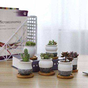 T4U 6cm Japanischer Stil Keramik Sukkulenten Kakteen Töpfe mit Untersetzer 6er-Set, Mini Blumentöpfe für Mini Zimmerpflanzen Moos Bonsai - 5