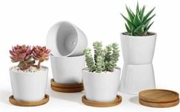 T4U 8cm Keramik Sukkulenten Kaktus Töpfe mit Untersetzer Rund 6er-Set, Klein Blumentopf Weiß für Moos Mini Zimmerpflanzen - 1
