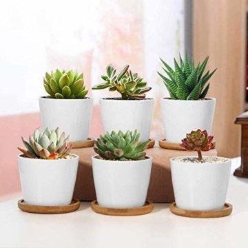 T4U 8cm Keramik Sukkulenten Kaktus Töpfe mit Untersetzer Rund 6er-Set, Klein Blumentopf Weiß für Moos Mini Zimmerpflanzen - 4