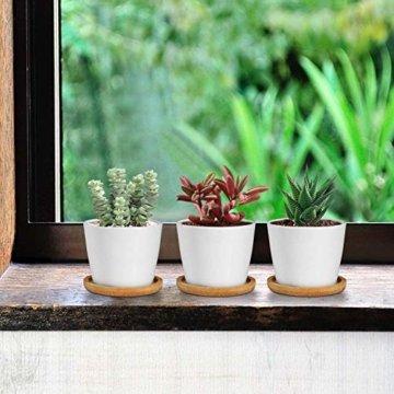 T4U 8cm Keramik Sukkulenten Kaktus Töpfe mit Untersetzer Rund 6er-Set, Klein Blumentopf Weiß für Moos Mini Zimmerpflanzen - 5
