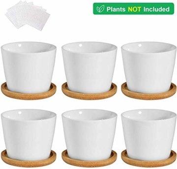 T4U 8cm Keramik Sukkulenten Kaktus Töpfe mit Untersetzer Rund 6er-Set, Klein Blumentopf Weiß für Moos Mini Zimmerpflanzen - 8