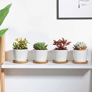 T4U 8cm Keramik Sukkulenten Kaktus Töpfe mit Untersetzer Rund 6er-Set, Klein Blumentopf Weiß für Moos Mini Zimmerpflanzen - 9