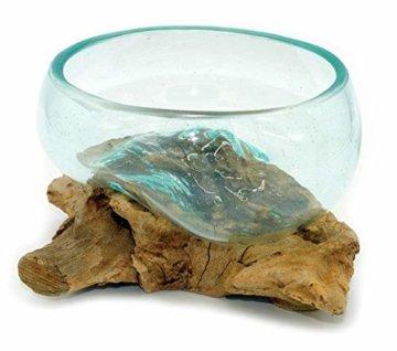 Wurzel mit Glasschale klein Schale Dekoschale Glas auf Holz Durchmesser 12-13 cm Holzdeko Teakholz Deko (Wurzel 13-15 cm) - 5