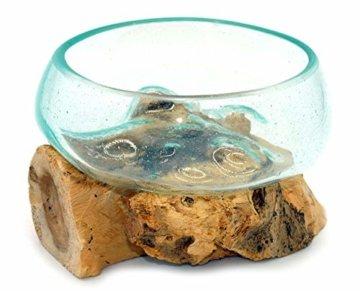 Wurzel mit Glasschale klein Schale Dekoschale Glas auf Holz Durchmesser 12-13 cm Holzdeko Teakholz Deko (Wurzel 13-15 cm) - 8