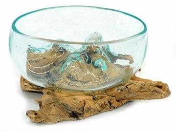 Wurzel mit Glasschale klein Schale Dekoschale Glas auf Holz Durchmesser 12-13 cm Holzdeko Teakholz Deko (Wurzel 13-15 cm) - 9