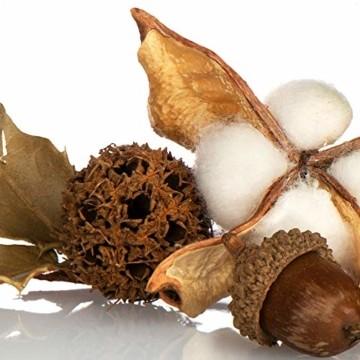 com-four® 3X Weihnachtsdekoration im Beutel mit Zapfen und Zweigen - Streudeko weihnachtlich - Bastel Set - Tischdeko - Adventskranz - Weihnachtsschmuck (3X Beutel: Zapfen braun/weiß. Zweige) - 2