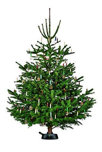 Krinner Recycling Christbaumständer Green Line M, 100% recyceltes Plastik, Schwarz, 36 cm - 8