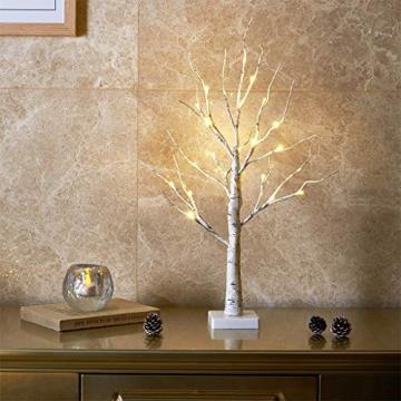 EAMBRITE Lichterbaum Lichterzweige für Innen 24 Warmweiß LEDs Bäumchen Birken Dekozweige Batteriebetrieb Weihnachtsdeko für Zuhause Party Geburtstag Hochzeit Innendekoration (60cm/2ft) - 1