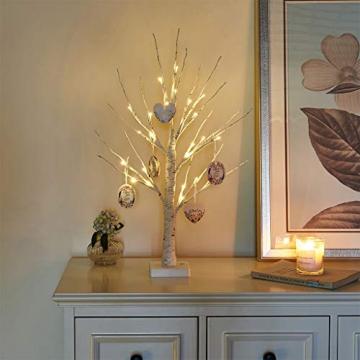 EAMBRITE Lichterbaum Lichterzweige für Innen 24 Warmweiß LEDs Bäumchen Birken Dekozweige Batteriebetrieb Weihnachtsdeko für Zuhause Party Geburtstag Hochzeit Innendekoration (60cm/2ft) - 5