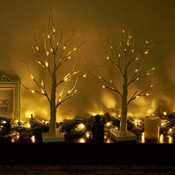 EAMBRITE Lichterbaum Lichterzweige für Innen 24 Warmweiß LEDs Bäumchen Birken Dekozweige Batteriebetrieb Weihnachtsdeko für Zuhause Party Geburtstag Hochzeit Innendekoration (60cm/2ft) - 6