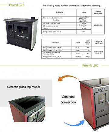 EEK A+ Kaminofen mit Backfach und Herdplatte Practik Lux Holzofen 9,5 kW Kamin Ofen Dauerbrandofen Werkstattofen Schwedenofen Hüttenofen Heizofen - 6