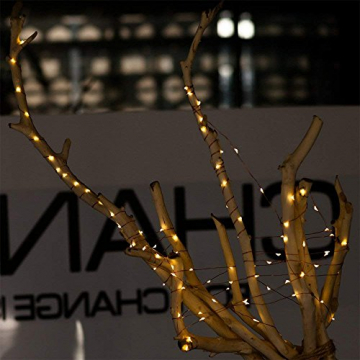 Erchen Strom-betrieben LED Lichterkette, 165 FT 500 LED 50M Stecker dimmbare Kupfer Draht Lichterketten mit 12V DC Adapter Fernbedienung für Innen Außen Weihnachten Party (warmweiß) - 5