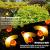 Solar Lichterkette Aussen,66LED Bienen lichterkette Wasserdichte 8 Modi , dekorativ für Garten, Rasen, Terrasse, Sommerfest, Weihnachten,Feiertag (Warmweiß) - 2