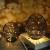 Kerzenständer 2er Set, Kerzenhalter Schwarz Oval Metall Kerzenleuchter für Wohnzimmer Schlafzimmer Vintage Deko, Hochzeit Bankett Weihnachts Kerzenleuchter 14 *15.5 / 16 * 18cm - 4