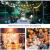 WOWDSGN 30+6 Stk. G40 Glühbirnen Lichterkette Außen, LED Glühlampen Lichterkette für Innen und Außen, Strombetrieben, Wasserdicht, keine Kitze, ideal für Weihnachtsdeko, Hochzeit, Party usw. - 3