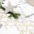 100%Mosel Tischläufer Sterne, in Gold/Metallic (28 cm x 5 m), Tischband aus Organza, edle Tischdeko für Weihnachten & Adventszeit, Festliche Dekoration zu besonderen Anlässen - 3