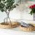 Decorasian Tablett rund geflochten aus Seegras - Wasserhyazinthe - Set 32cm + 28cm Durchmesser - Obstschale - 3
