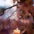 Ecosides 8cm 12 Hängenden Glaskugeln mit Loch,Hängend Teelichthalter aus Glas Kerzenhalter Windlichter Kristalle Terrarium Vase Sukkulenten Luftpflanzen Halter Hänge Deko für Hochzeit Garten - 2