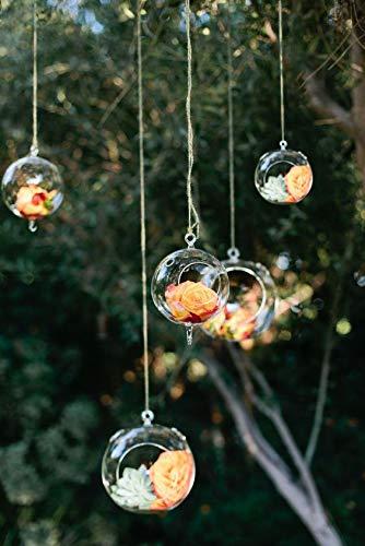Ecosides 8cm 12 Hängenden Glaskugeln mit Loch,Hängend Teelichthalter aus Glas Kerzenhalter Windlichter Kristalle Terrarium Vase Sukkulenten Luftpflanzen Halter Hänge Deko für Hochzeit Garten - 11
