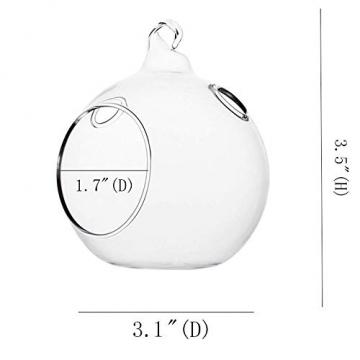 Ecosides 8cm 12 Hängenden Glaskugeln mit Loch,Hängend Teelichthalter aus Glas Kerzenhalter Windlichter Kristalle Terrarium Vase Sukkulenten Luftpflanzen Halter Hänge Deko für Hochzeit Garten - 3