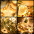 Ehome Flaschenlicht 2M/12x 20 LED Flaschen-Licht Lichterkette flaschenlichterkette korken LED Nacht Licht Weinflasche Hochzeit Party romantische Deko (warm) - 4
