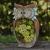 La Jolíe Muse Gartendeko Eule Solar Leuchte, aus Kunstharz Wetterfest, Weihnachten Geschenk Eule, Gartenfigur Ornament für draußen Hof & Balkon H27 x W16cm - 3