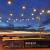 LE Solar Lichterkette Glühbirnen Aussen, 7.62M 25 LEDs G40 Außen Beleuchtung, USB wiederaufladbar, 4 Modus Solarlichterkette für Garten, Hochzeit, Balkon, Haus, Weihnachten Deko, Warmweiß - 4