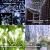 LED Lichtvorhang 3x3m, Ollny 300 LED Lichterkette Vorhang mit Fernbedienung & Timer 8 Modi Lichterkettenvorhang für Außen Innen Weihnachten Partydekoration Geburstag Hochzeit Fenster Zimmer, Kaltweiß - 2