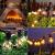 Lichterkette Außen G40 Glühbirnen BrizLabs 7.6M 25 + 2 Birnen Garten Lichterkette Aussen Glühlampen Wasserdicht Globe Beleuchtung für Innen Haus Balkon Patio Party Hochzeit Weihnachten, Warmweiß - 2