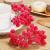 Tatuo Packung von 200 Stück Frosted Fruit Holly Beeren Mini Weihnachten Künstliche Berry Blume für Zuhause, Hochzeit, Party, Geburtstag, DIY Dekoration (Rot) - 2