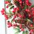 Rote Beeren Weihnachtskranz Ø 60cm, Hukz Künstlicher Türkranz Weihnachten Kranz Girlande für Haustür Deko Winter Haus Dekoration, Deko-Kranz Tannenkranz Adventskranz Weihnachts Weihnachtsgirlande - 3