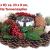 Britesta Weihnachtsgesteck: Handgefertigtes Weihnachts- & Adventsgesteck mit Teelicht-Halter, 23cm (weihnachtdeko) - 2
