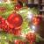 FAIRYTREES Weihnachtsbaum künstlich BAYERISCHE Tanne Premium, Material Mix aus Spritzguss & PVC, inkl. Holzständer, 220cm, FT23-220 - 4
