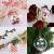 KATELUO 15 Stücke Klar Weihnachtskugeln, Plastik-Kugeln, Füllbare Weihnachtsplastikkugeln,fürBefüllen und Dekorieren Christbaumschmuck, Tischdekoration, Weihnachtssouvenirs - 3