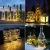 LE Flaschenlicht, 20 LEDs Weinflaschen Lichterkette, 8 Stück 2M Batteriebetrieben Flaschenlichterkette mit Kork, Kupferdraht Lichterketten für Zimmer Außen Innen Weihnachten Party Deko, Warmweiß - 3