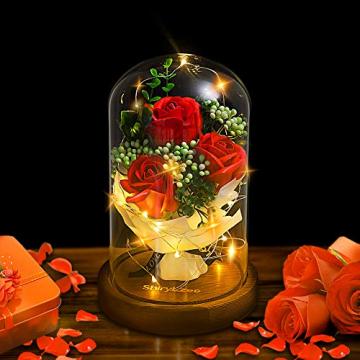 Shirylzee Rose im Glas Ewige Rose Glas Licht Künstliche Rose mit LED-Licht in Glaskuppel, Romantisch Dekoration Geschenk zum Muttertag Valentinstag Jubiläum Geburtstag Hochzeit Weihnachten (Rot) - 1