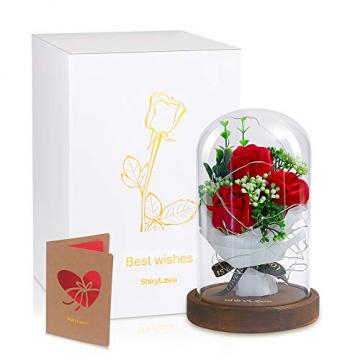 Shirylzee Rose im Glas Ewige Rose Glas Licht Künstliche Rose mit LED-Licht in Glaskuppel, Romantisch Dekoration Geschenk zum Muttertag Valentinstag Jubiläum Geburtstag Hochzeit Weihnachten (Rot) - 7